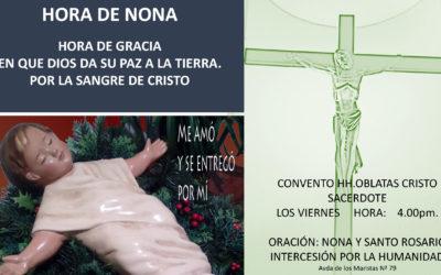 8 ENERO-Encuentro de ORACIÓN: NONA Y SANTO ROSARIO. Intercesión por la humanidad.